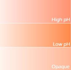 Orange Lab Color (New Formulation)