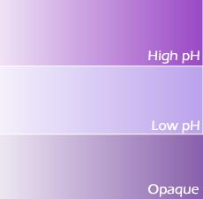 Royal Purple Lab Color (New Formulation)